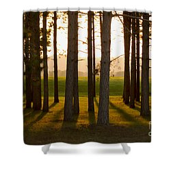 Whispers Of The Trees Shower Curtain