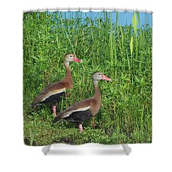 Whistling Ducks Shower Curtain