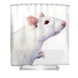 White Albino Rat Watercolor Shower Curtain
