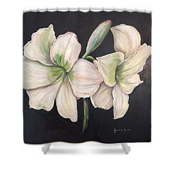White Amaryllis  Shower Curtain