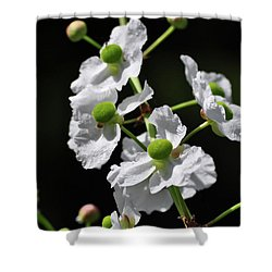 White And Green Wildflowers Shower Curtain