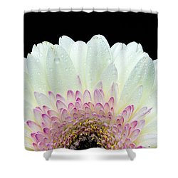 White And Pink Daisy Shower Curtain