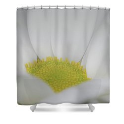 White Angel Shower Curtain by Roy McPeak