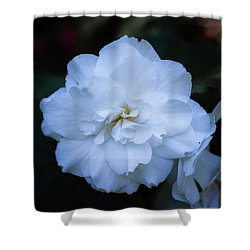 White As Snow Begonia Shower Curtain