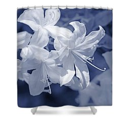 Shower Curtain featuring the photograph White Azalea Flowers Blues by Jennie Marie Schell