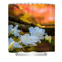 White Azaleas In The Garden Shower Curtain