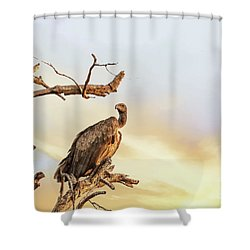 White-backed Vulture Shower Curtain