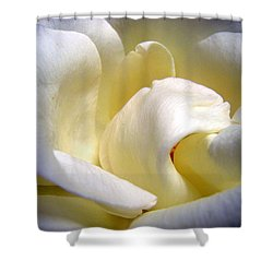 White Beauty Rose Shower Curtain