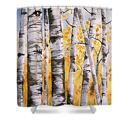 White Birch Meadow Shower Curtain