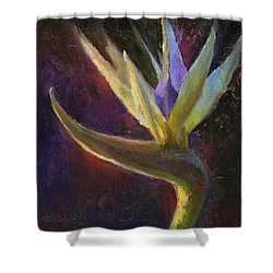 Shower Curtain featuring the painting White Bird Of Paradise -tropical Flower Painting by Karen Whitworth