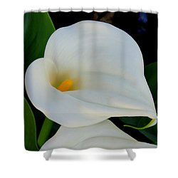 White Cala Lily Shower Curtain