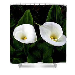 White Calla Lily Shower Curtain