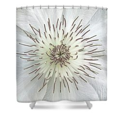 White Clematis Flower Garden 50121b Shower Curtain