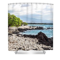 White Coral Coast Shower Curtain by Denise Bird