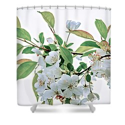 White Crabapple Blossoms Shower Curtain