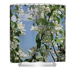 White Crabapple Shower Curtain