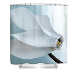 White Cyclamen. Shower Curtain