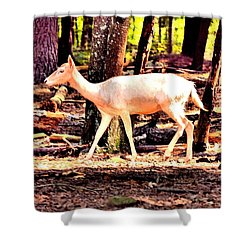 White Deer And Forest Stroll Shower Curtain