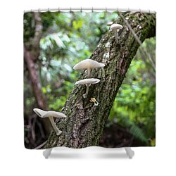 White Deer Mushrooms Shower Curtain by Christopher L Thomley