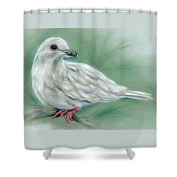 Shower Curtain featuring the pastel White Dove In The Pine by MM Anderson