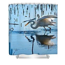 White Egret At Horicon Marsh Wisconsin Shower Curtain by Steve Gadomski