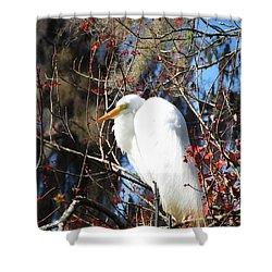 White Egret Bird Shower Curtain