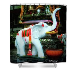 Shower Curtain featuring the photograph White Elephant. Meaning A Big Expensive by Mr Photojimsf