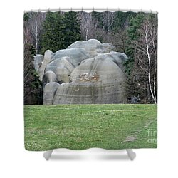 White Elephant Rocks Shower Curtain by Michal Boubin