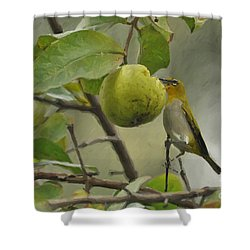White Eye 2 Shower Curtain