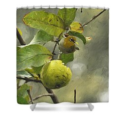 White Eye 3 Shower Curtain
