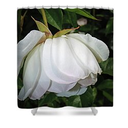 Shower Curtain featuring the photograph White Floral by Tikvah's Hope