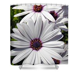 White Flower 1 Shower Curtain
