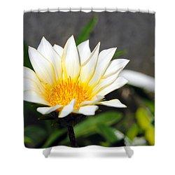White Flower 3 Shower Curtain