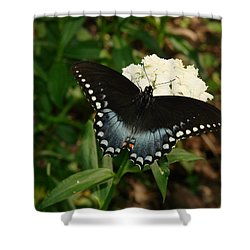 White Flowered Butterfly Shower Curtain