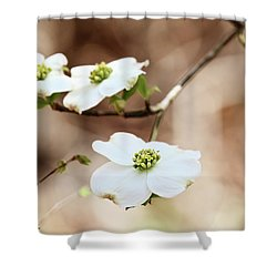 Shower Curtain featuring the photograph White Flowering Dogwood Tree Blossom by Stephanie Frey