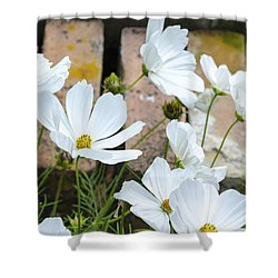 White Flowers Against Bricks Shower Curtain