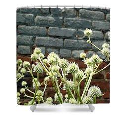 White Flowers And Bricks Shower Curtain