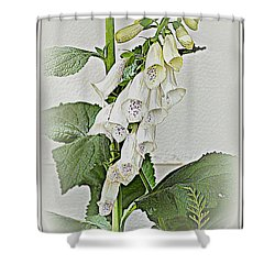 White Foxglove Shower Curtain