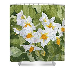 White Garden Blossoms Watercolor On Masa Paper Shower Curtain