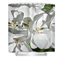 White Geraniums Shower Curtain