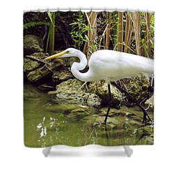 White Heron Shower Curtain