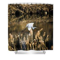 White Heron Shower Curtain by Hyuntae Kim