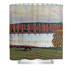 White Horse Black Horse Shower Curtain by Laurie Stewart