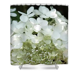 White Hydrangea I Shower Curtain