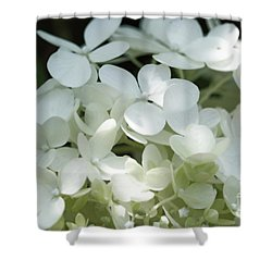 White Hydrangea II Shower Curtain