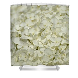 Shower Curtain featuring the photograph White Hydrangea  by Lyle Crump