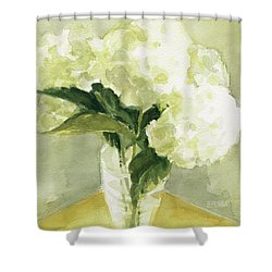 White Hydrangeas Morning Light Shower Curtain by Beverly Brown