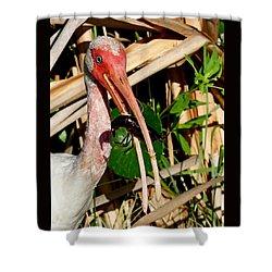 White Ibis Eating Crayfish Shower Curtain