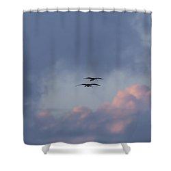 White Ibis In Flight At Sunset Shower Curtain
