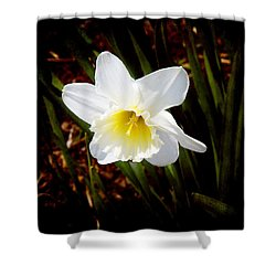 White In Nature Shower Curtain